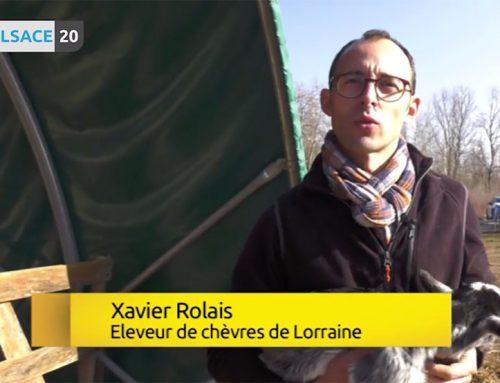 Diffusion sur la chaîne Alsace20